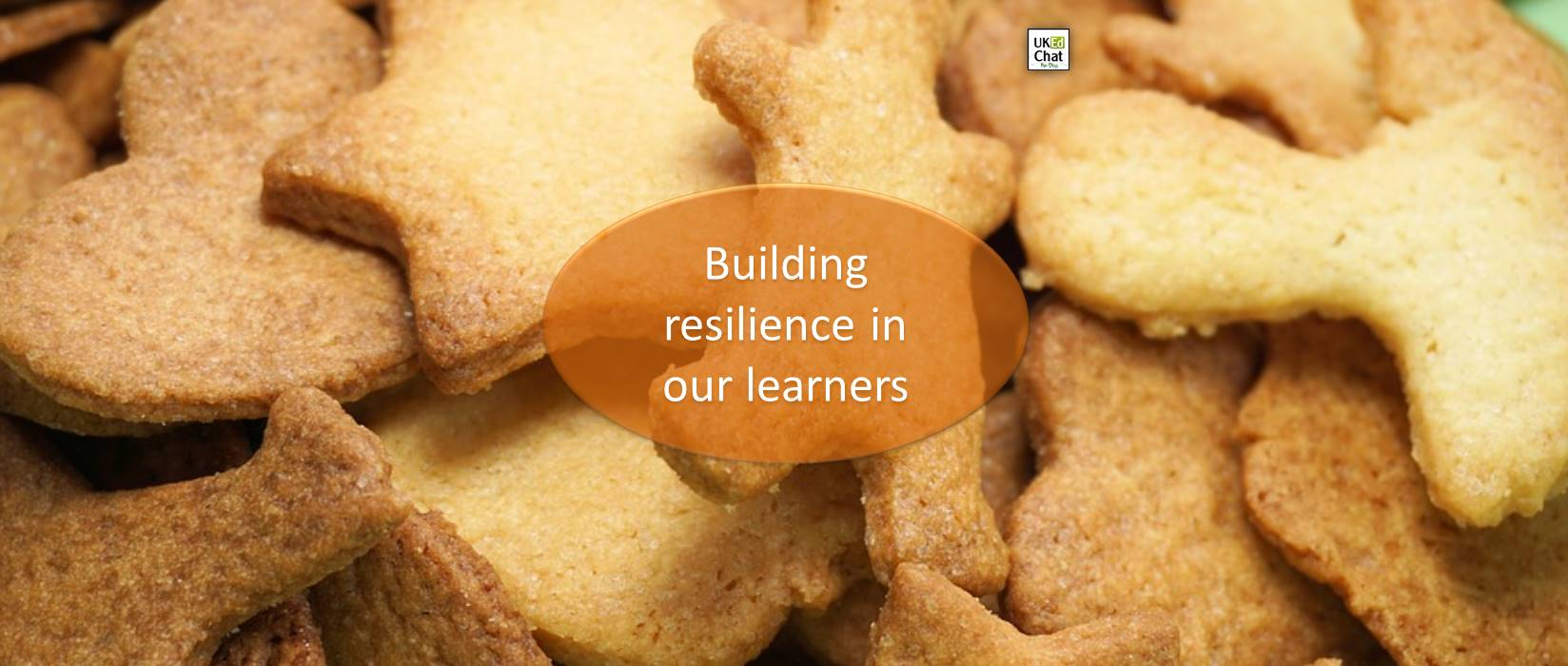 Building Resilience in our Learners by @cillachinchilla – UKEdChat